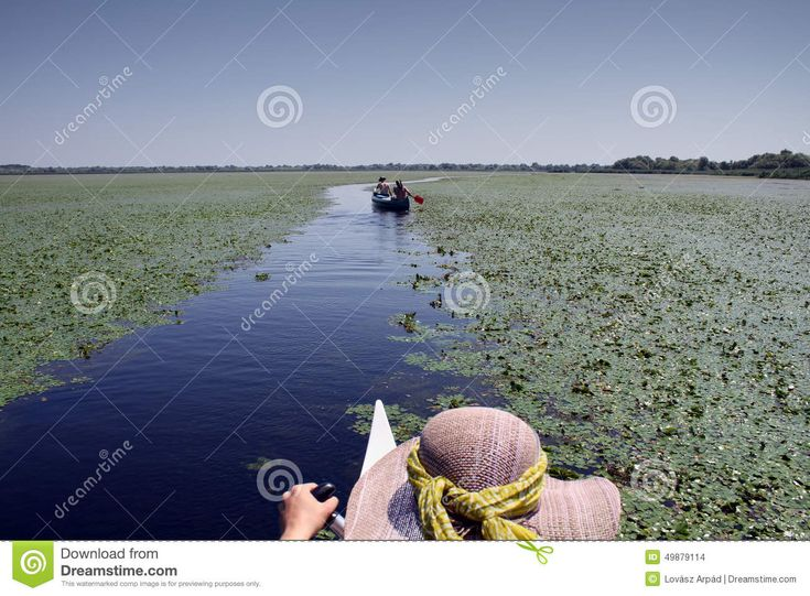 The Danube Delta is the second largest river delta in Europe, after the Volga Delta, and is the best preserved on the continent. The greater part of the Danube Delta lies in Romania ( Tulcea county ), while its northern part, on the left bank of the Chilia arm, is situated in Ukraine (Odessa Oblast).