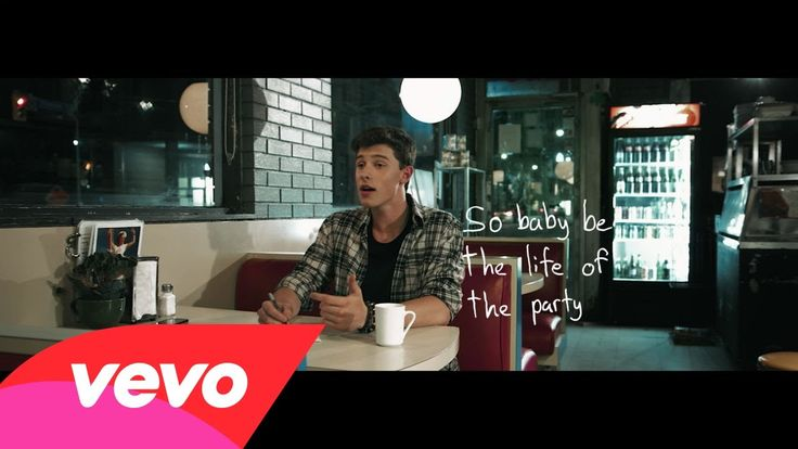 Shawn Mendes - Life Of The Party (Lyric Video)| Omg he's beautiful.
