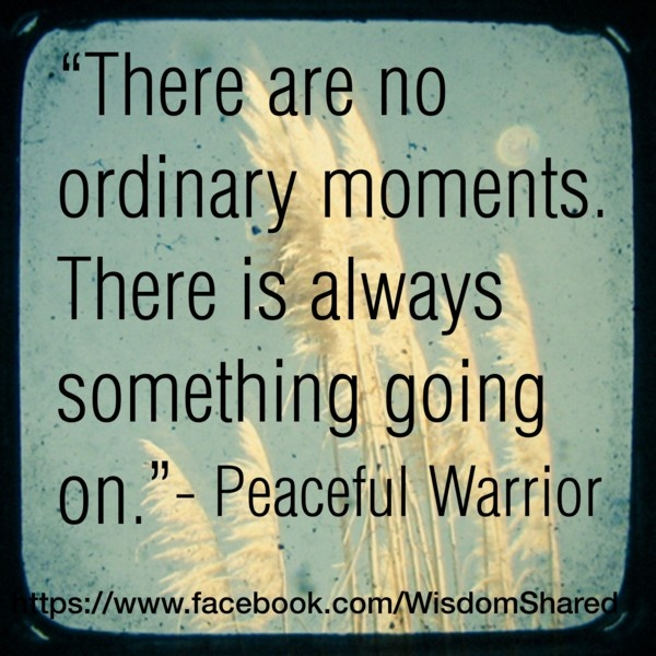 #Ordinary moments, #Peaceful Warrior, #Quote #words