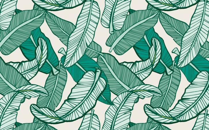 Palm Leaf Chrome Theme Themebeta Banana Leaves Image Backgrounds Desktop Laptop Wallpaper Desktop Wallpapers