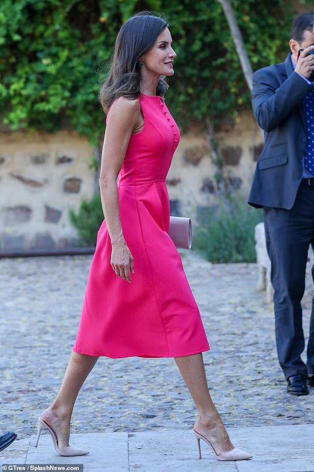 Queen Letizia stuns in pink dress as she presents awards in Almagro | Pink  dress, Dresses, Queen letizia