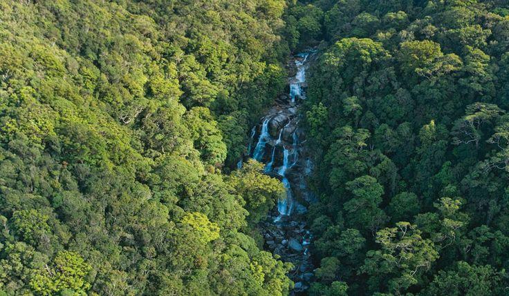 100 Incredible Travel Secrets #25 Mossman Gorge, QLD