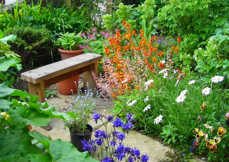How to Design a Small Front Garden Cheaply