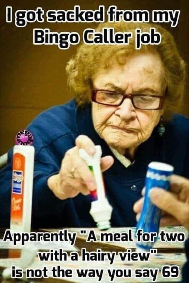 Pin By Coolgirl On Ageless Inappropriate Memes Vulgar Humor Bingo Funny