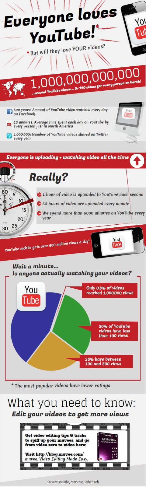 muvee video editing software infographic
