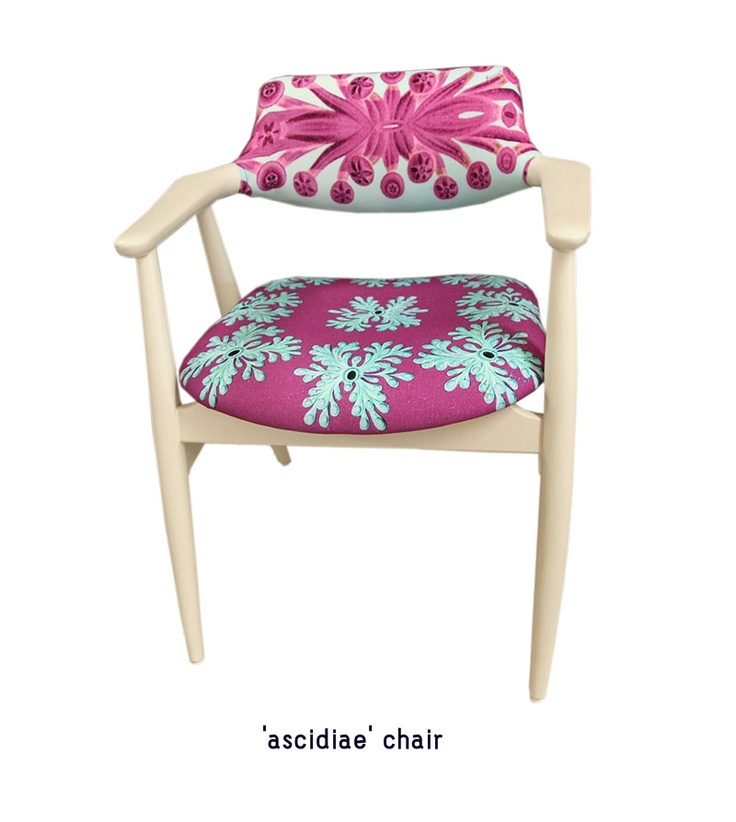ascidiae chair