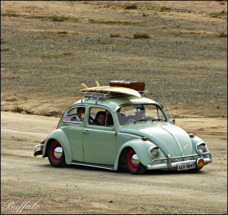 You can even take the bug surfing
