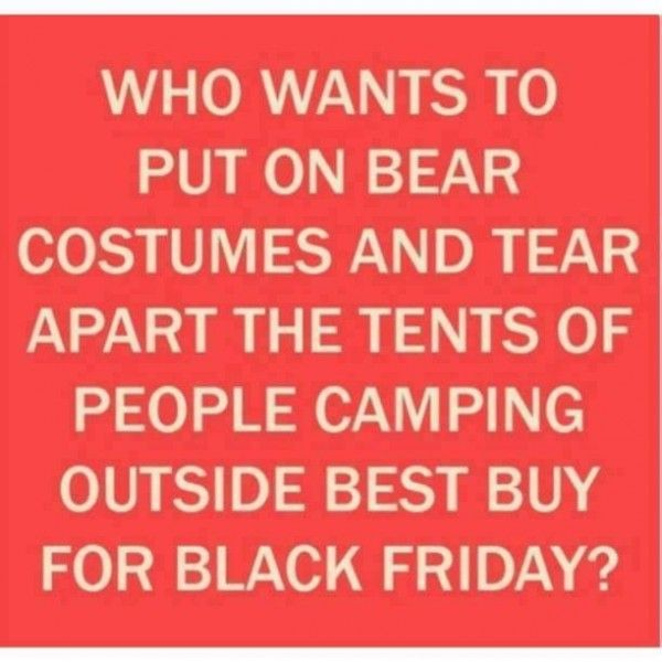 I need two bear costumes and a willing friend.