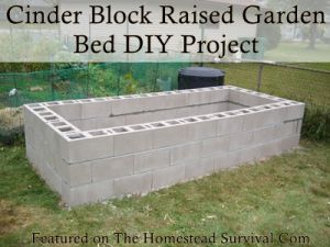 The Homestead Survival | Cinder Block Raised Garden Bed DIY Project | http://thehomesteadsurvival.com