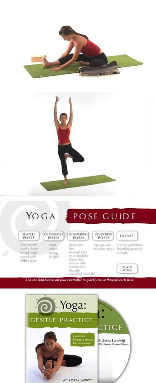 This is the best yoga DVD I own (and I have a bunch).  After using it consistently for a few weeks, I noticed a HUGE improvement in my flexibility and greatly decreased back and neck pain that had been unresponsive to just about everything else.  Zyrka is a wonderful, calming, soothing, clear instructor and I can't recommend the DVD highly enough.  Get it!