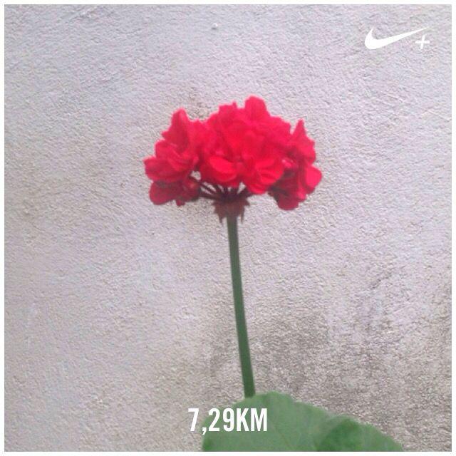 #run #running