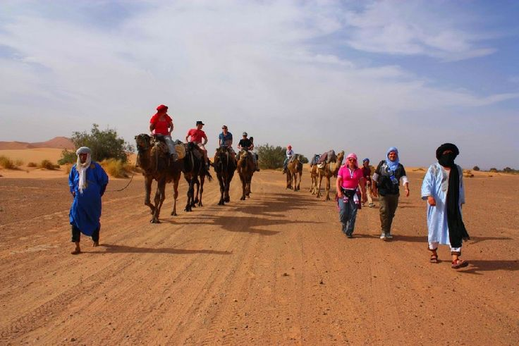 Your  #MoroccoDayTours  provide options for desert excursions and day trips from Marrakech where you can have amazing experiences