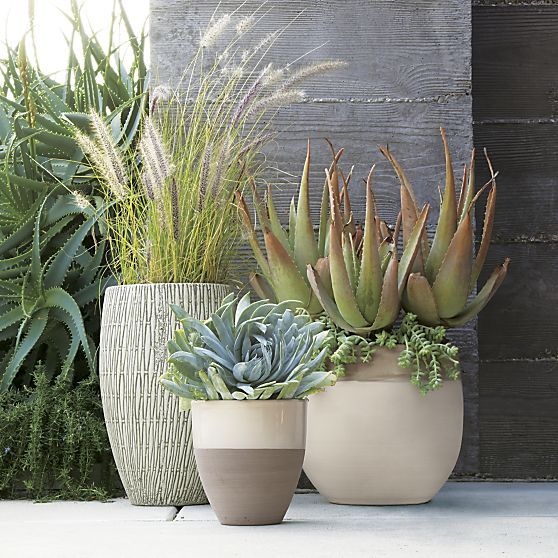 Otter Planter in Planters & Gardening | Crate and Barrel
