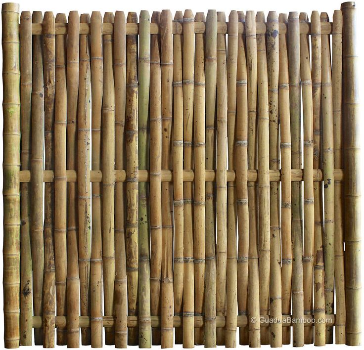 bamboo fence - Google Search                                                                                                                                                      More