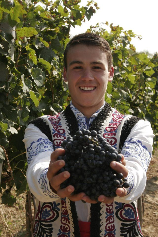 """The Moldova wine festival, officially named """"National Wine Day"""", takes place in Chisinau during the first weekend in October at the end of the grape harvest. The festival celebrates Moldova's rich winemaking traditions, which date back to the 15th century."""