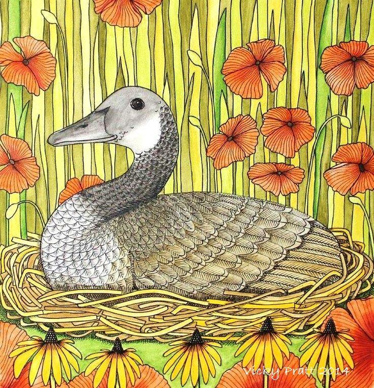 Canadian Goose Black eyed Susans. Water colour pencils and Unipin fine liner. http://vicpratt.wix.com/vickypratt Find me on Facebook Vicky Pratt - Illustrator.