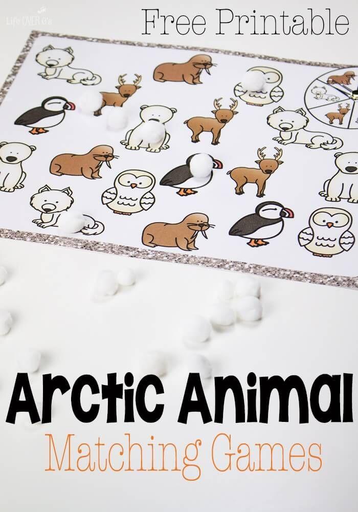 Arctic Animal Matching Games