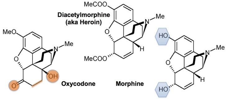 Take home message: Effexor / Venlafaxine interacts with the opioid system, specifically with the key opioid receptor involved in all pathological addictions. Antidepressants are marketed as not being addictive because they do NOT interact with the opioid receptors. This is clearly false in the case of Effexor / Venlafaxine. Two examples of opioids are Heroin and Effexor(Venlafaxine). For years I've been wondering why Effexor / Venlafaxine was such a particularly perni...