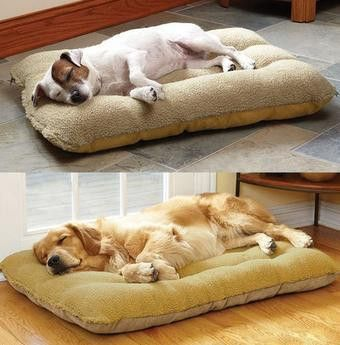 Large Dog Soft PP Cotton Bed White Only