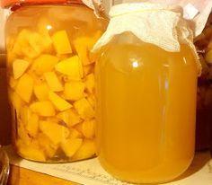Fermente Mutfağım: Doğal Fermente Elma Sirkesi