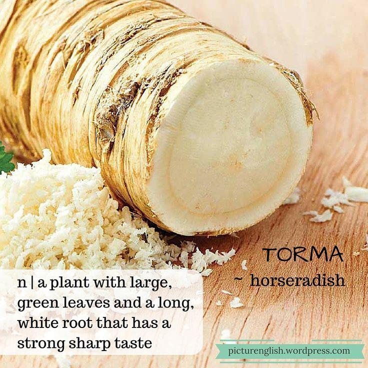 Horseradish / Torma