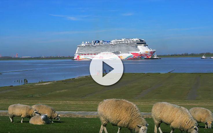 Una vez mas la el proceso de llevar los nuevos barcos hasta la mar desde los astilleros alemanes nos deja estos increibles vídeos del Norwegian Joy.