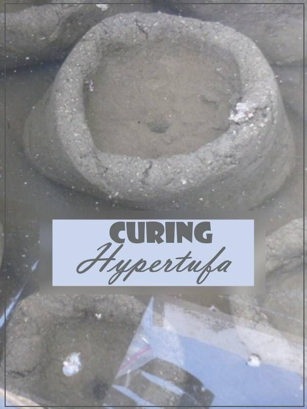 Curing Hypertufa Crucial Steps For A Long Lived Project Hypertufa The Cure Concrete Diy Projects