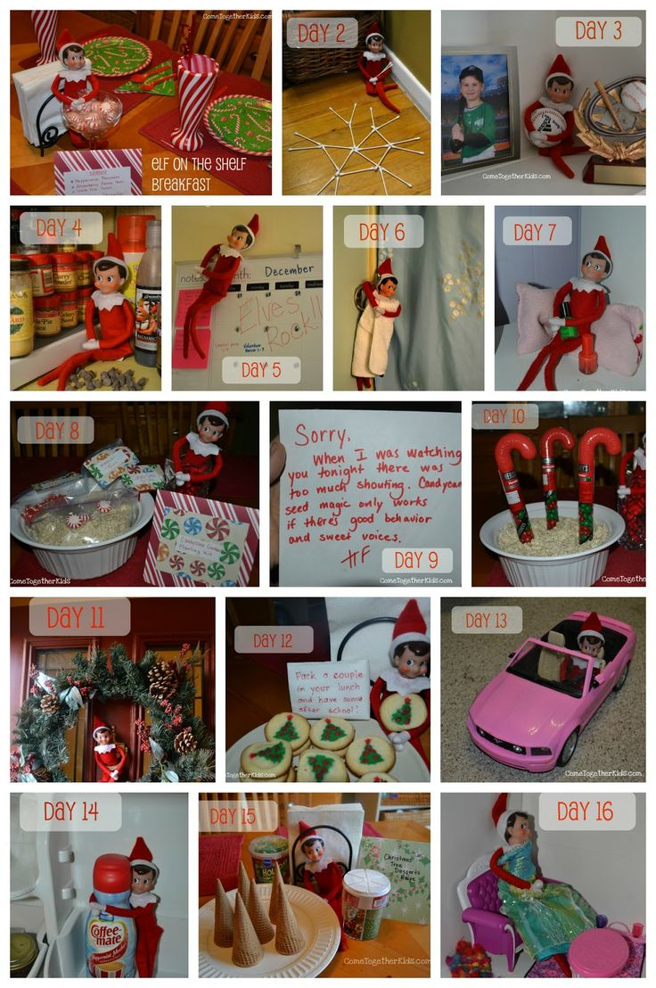 Ideas for the Elf on the Shelf (day by day)