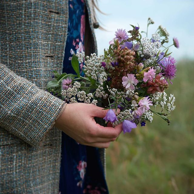 One bouquet per day: greater knapweed, alkanet, sorrel, yarrow, peach-leaved bellflower, soapwort, lupin, field scabious, bladder campion, picked in the meadows that adjoin our garden. #onebouquetperday [Svenska namn: väddklint, oxtunga ängssyra, röllika, stor blåklocka, liten blåklocka, såpnejlika, lupin, åkervädd, smällglim | Deutsche Namen: Skabiosen-Flockenblume, Gewöhnliche Ochsenzunge, Wiesen-Sauerampfer, Wiesen-Schafgarbe, Pfirsichblättrige Glockenblume, Rundblättrige Glockenblume…