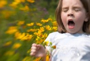 A lot of people suffer from pollen allergy, but most of them do not even know that what they are exhibiting are pollen allergy symptoms.