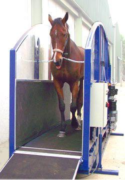 Dry Equine Treadmill Treadmill Pinterest Products
