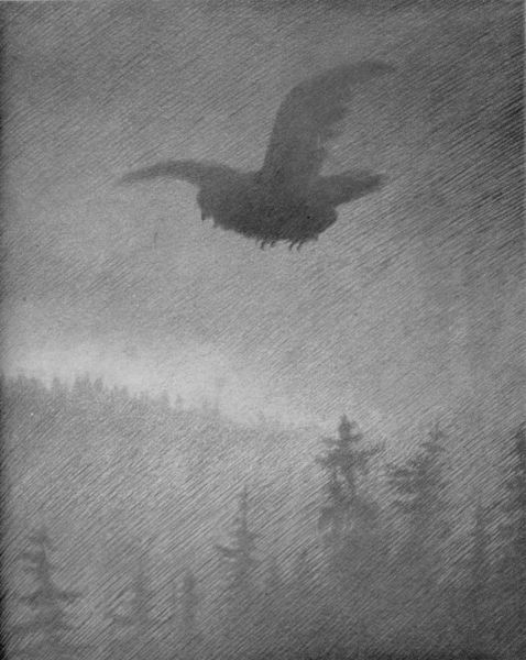 File:Theodor Kittelsen - Pesta Kommer, 1894-95 (Pesta's Coming).jpg - Wikimedia Commons