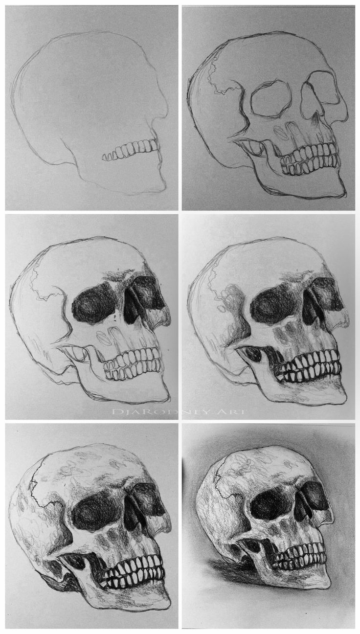 How to draw a skull || Skull Drawing||