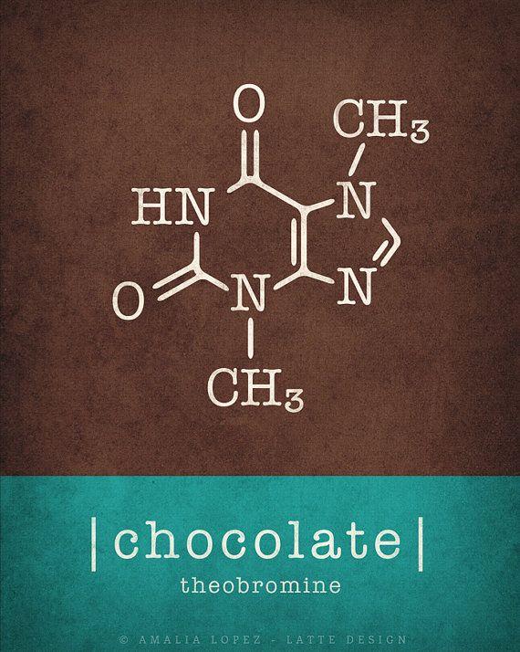 Kitchen Chemistry Book
