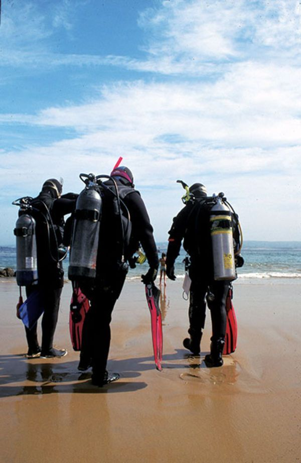 Don't end your dive because you're cold. Scuba Diving magazine's eight best tips to beat the chill on your next dive.