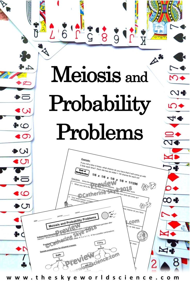 Meiosis and Probability Worksheet Probability worksheets
