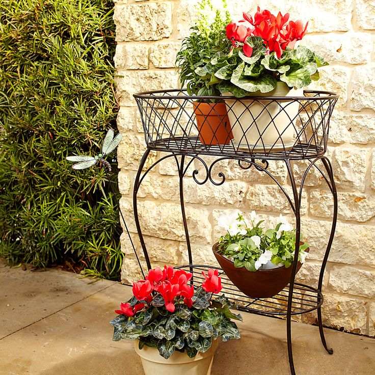 skillful design plant pots cheap. Black Oval Plant Stand 17 best Stands images on Pinterest  Indoor plants Pot