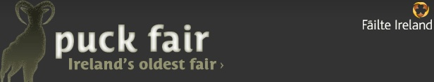 Puck Fair - Ireland's oldest fair > every august 10th, 11th & 12th