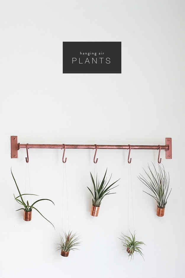 Spray paint a plastic or wooden dowel with copper spray paint, then hang air plants on it.