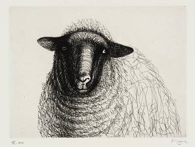 1000 Ideas About Sheep Drawing On Pinterest How To Draw