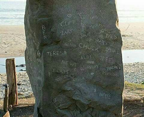 I cried the whole entire ending scene. When Thomas was carving Teresa's name in the rock next to Newt's and Chuck's.