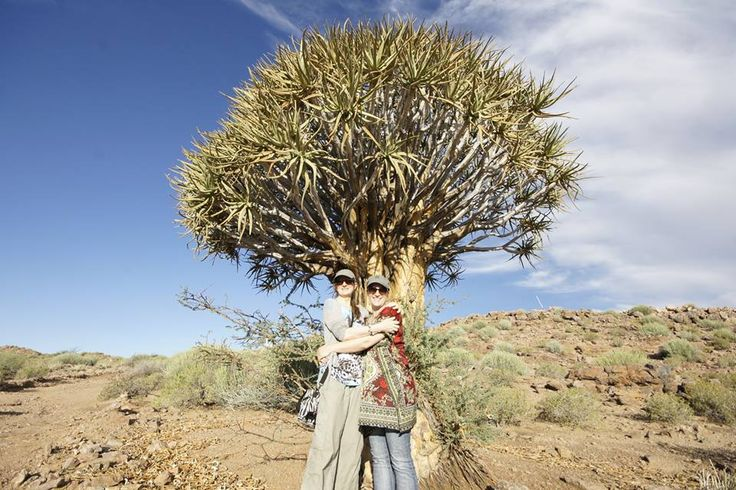 Follow the quiver tree - all along the Kokerboom Food and Wine Route - the Northern Cape is the place to be!