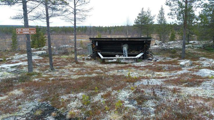 Retkellä Petterin kanssa Närpistön laavulla. 23.10.16