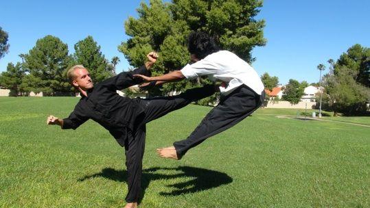 Learn combat tai chi