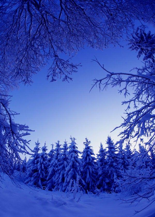 Beautiful Winter Outfit Www Pinterest Com: Best 25+ Winter Scenes Ideas Only On Pinterest