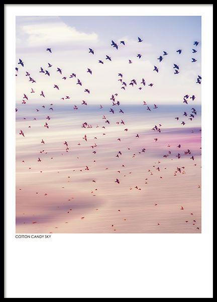 Taulut luontomotiiveilla. Valokuvat julisteisiin painettuina.