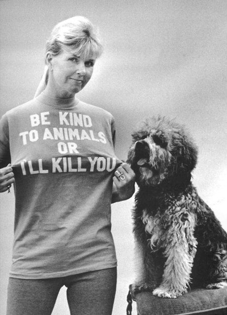 doris day (now in her late 80s) recently spoke on NPR with terry gross about her years of loving/rescuing the warm fuzzies. rad:)