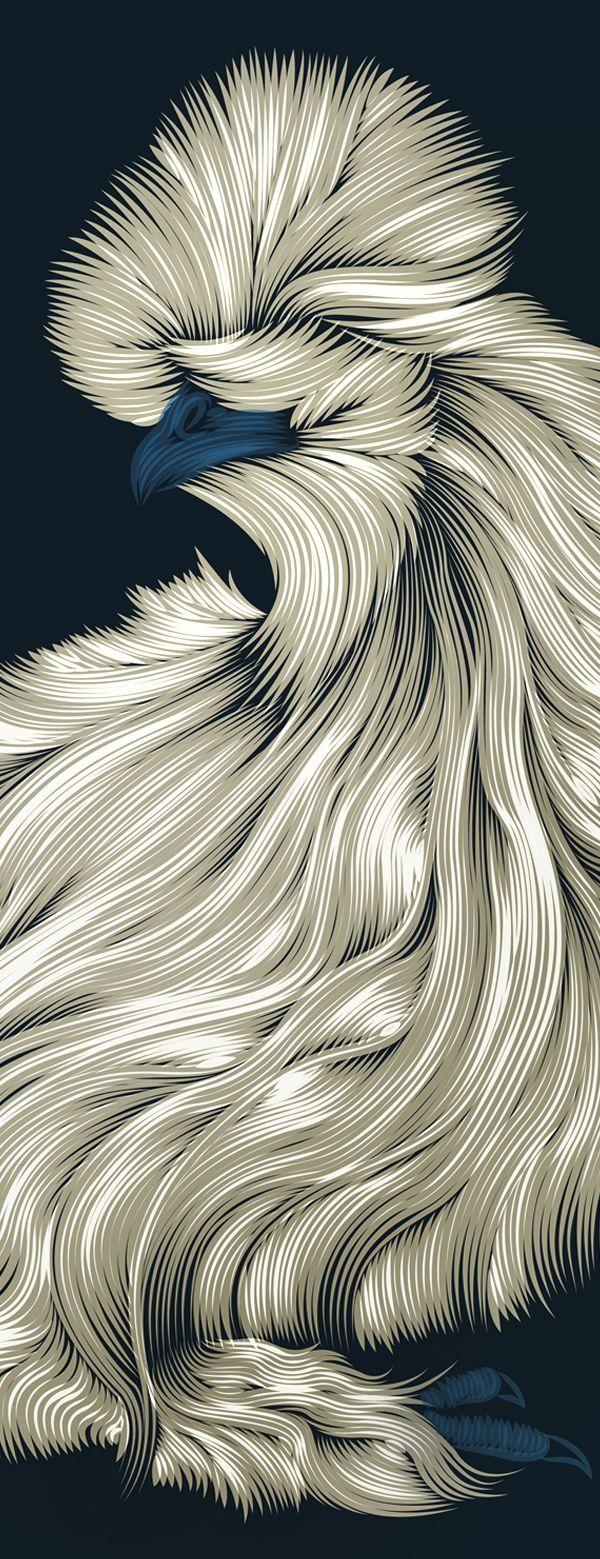 Fluffy Silkie Chicken by Patrick Seymour, via Behance