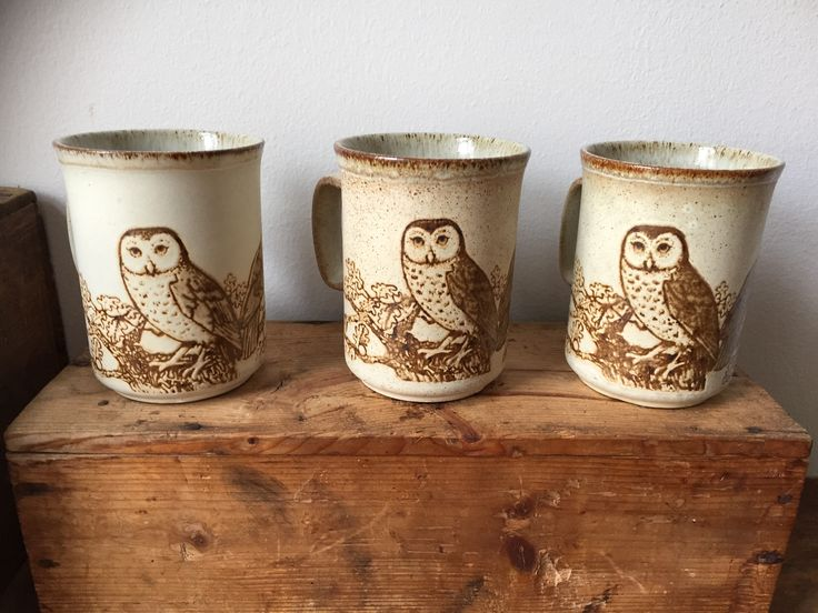 Vintage/Dunoon/owl/stoneware/mugs/jungalow/kitchen/cozy cuppa/ owls/tea/coffee/ hot chocolate /Còsagach