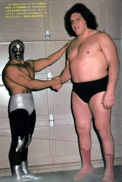 Mil Mascaras and Andre the Giant